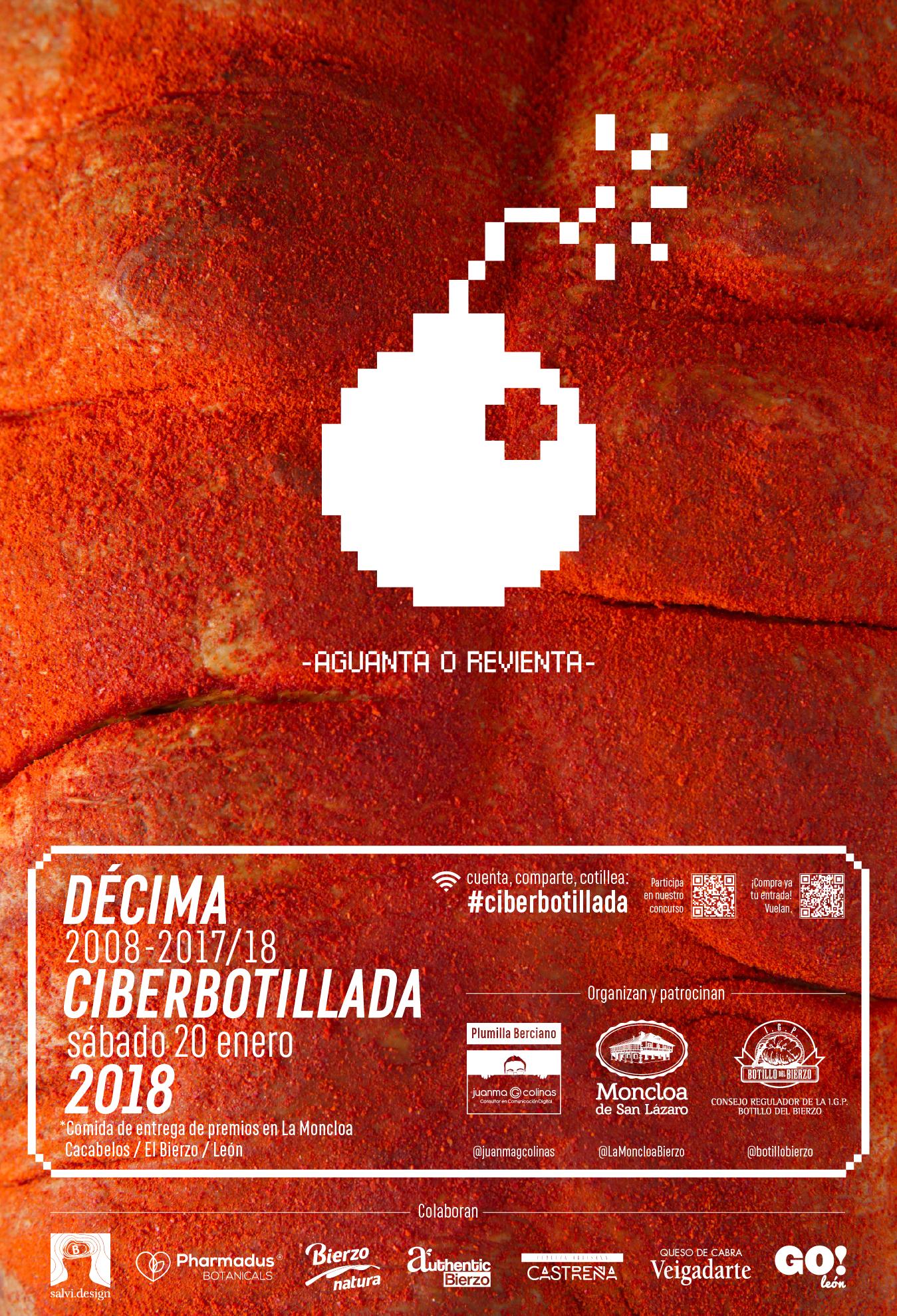 Cartel oficial de la décima Ciberbotillada